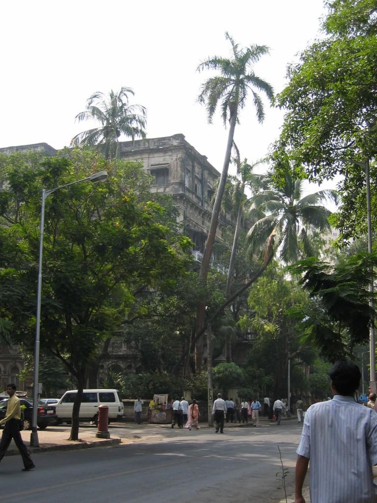 Mumbain katua