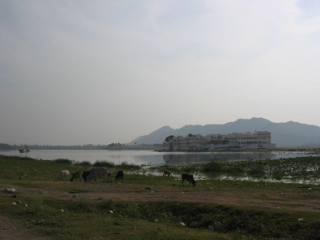 Taj Lake Palace rannalta