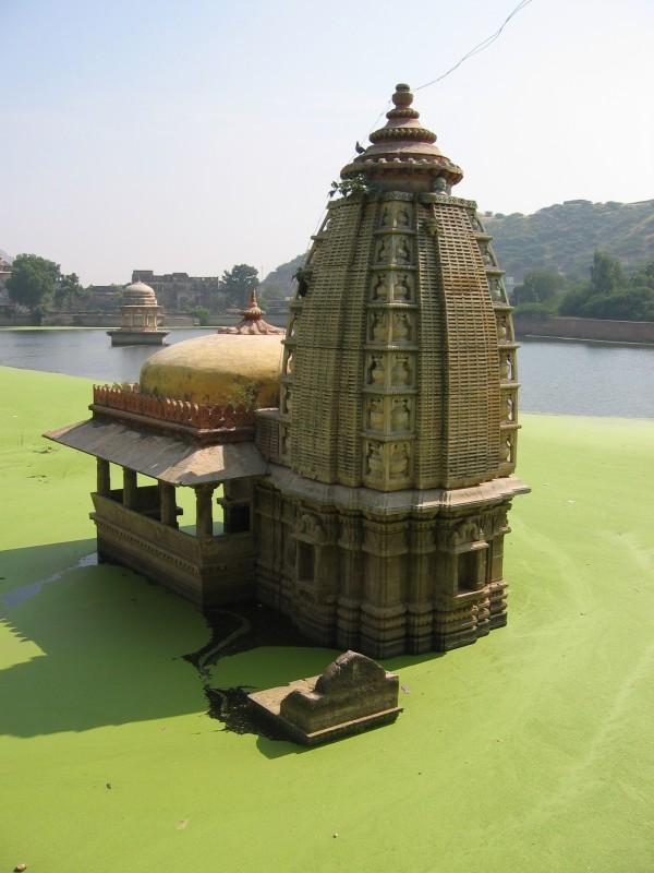 Nawal Sagar, temppeli ja vihreätä juttua