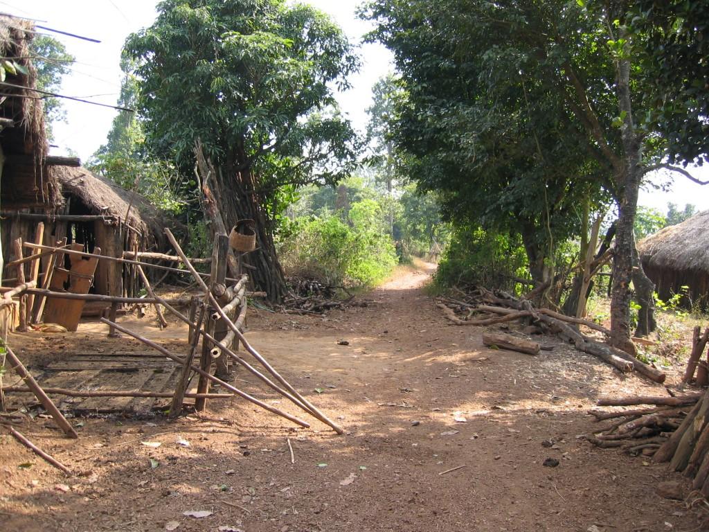 Puiston asukkaiden kylä
