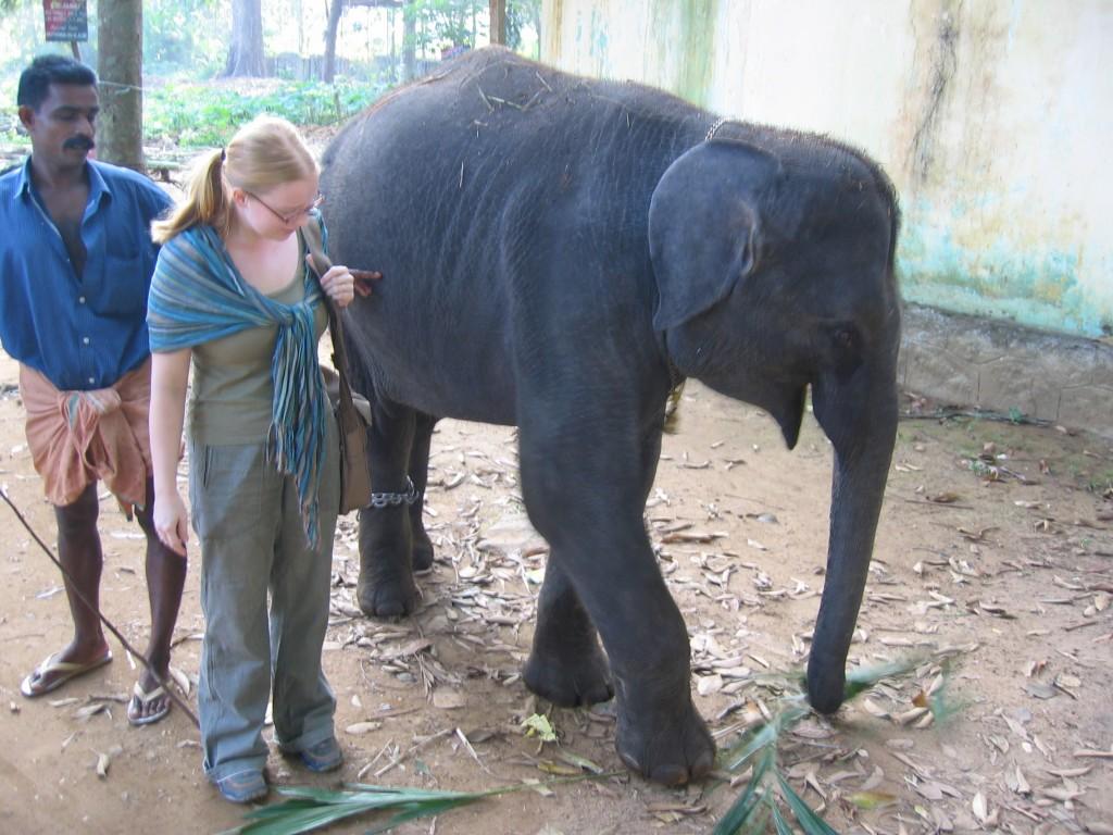 Maiju ja pikku-norsu