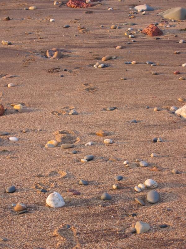 Vielä ehdittiin kävellä rannalla
