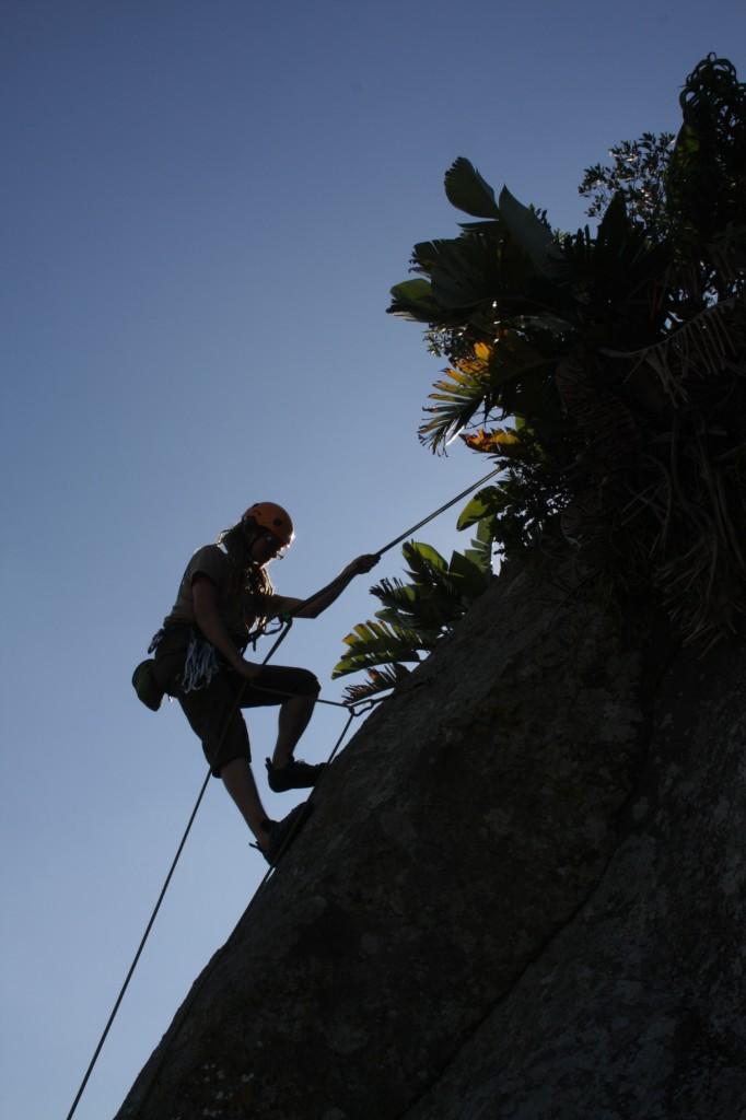 Mikko laskeutuu alas onnistuneen nousun jälkeen