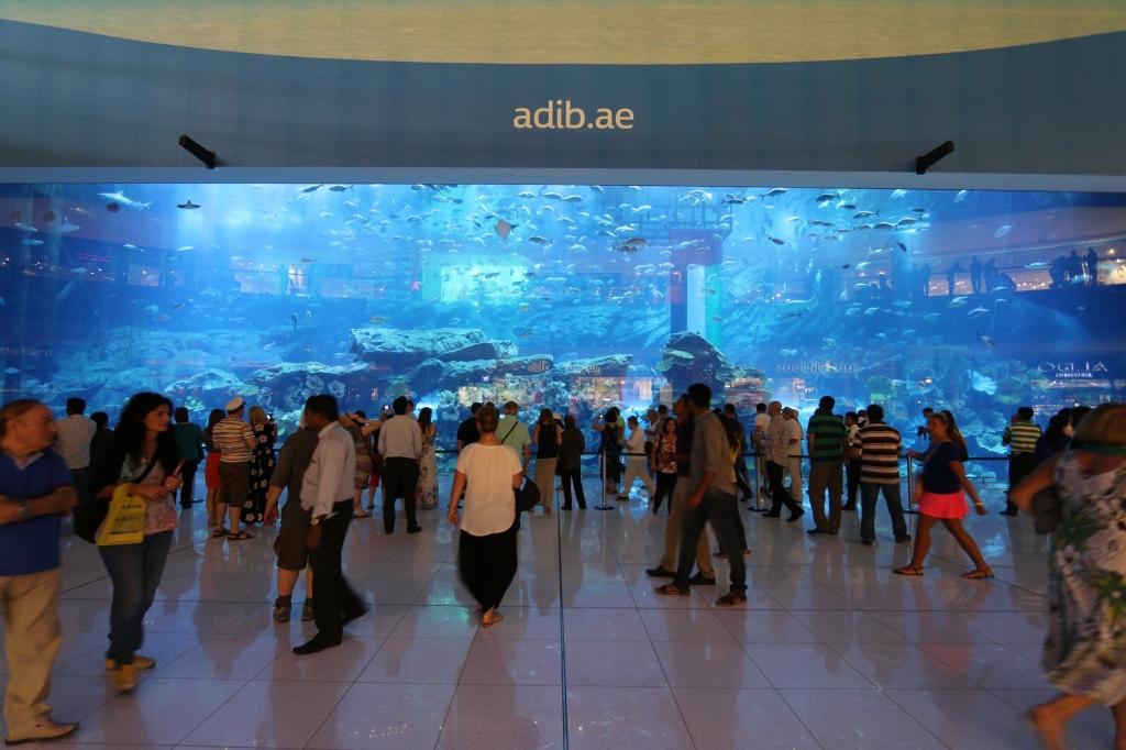 Dubai Mallin akvaario on ISO!