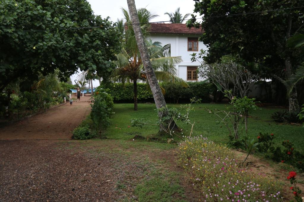 Talon takapiha sisäänajoväylän suunnalta. Tuossa kasvaa kookospalmuja ja kukkia. On myös jotain muita tuntemattomia puita.