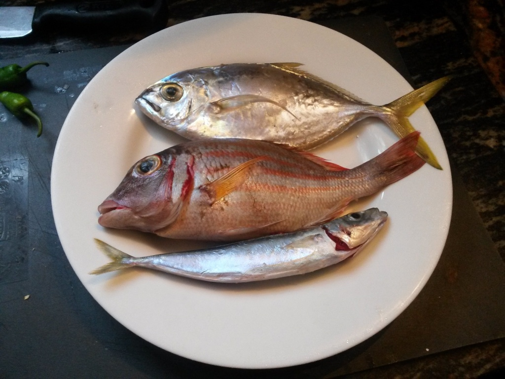 Three fishes from the fishermen on the beach in front of the house - 250 rupees