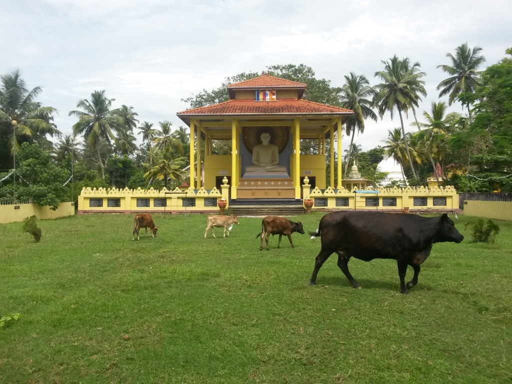 Lähitemppelin iso buddha-patsas