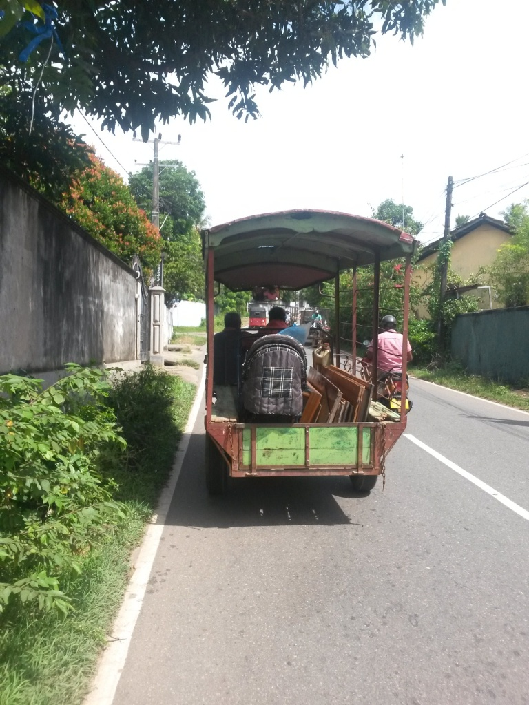 All kinds of transportations we saw on our journeys