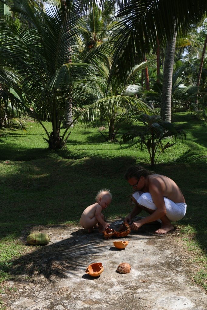 Coconut inspection