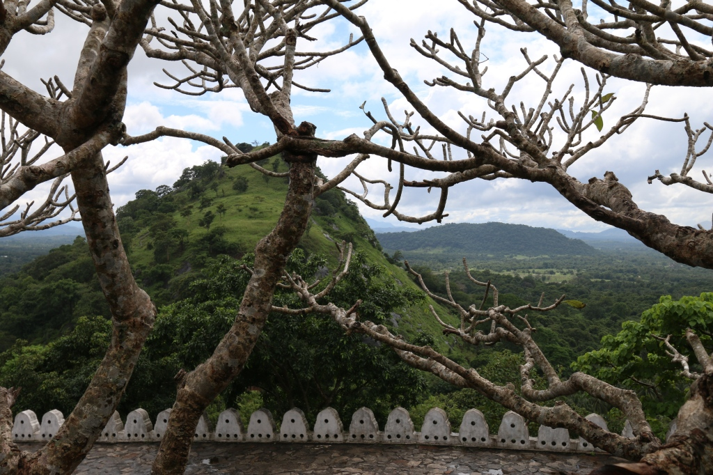 View from Dambulla