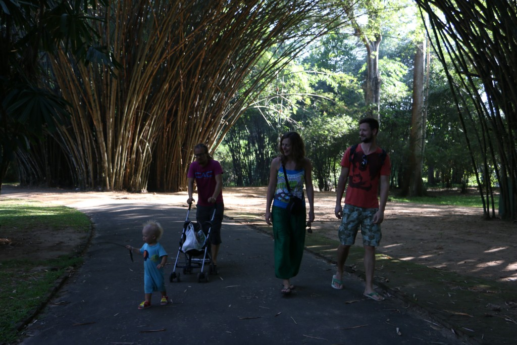 "We visited the Royal Botanical Gardens (or Peradeniya Gardens) with our new Slovenian friends. It was quite nice a place to just stroll around and Eero had plenty of opportunities to play with sticks - or with ""kepukka"" as he says."